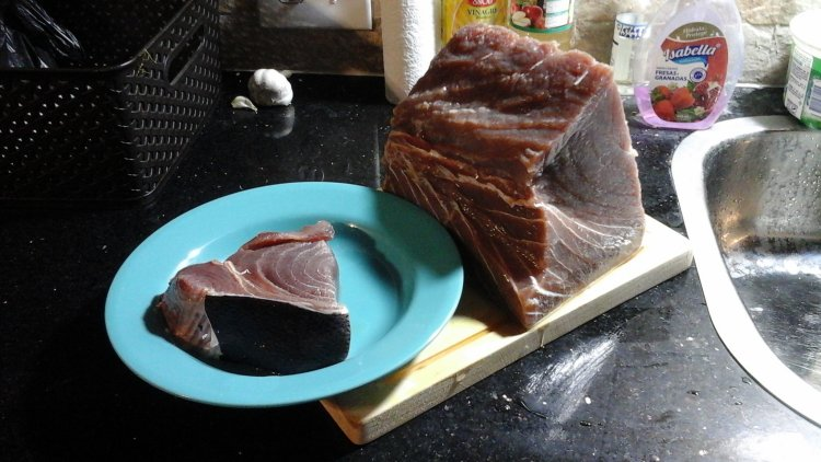 5lb hunk of tuna